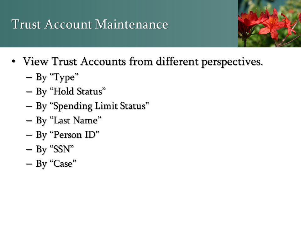"""Trust Account Maintenance View Trust Accounts from different perspectives. View Trust Accounts from different perspectives. – By """"Type"""" – By """"Hold Sta"""