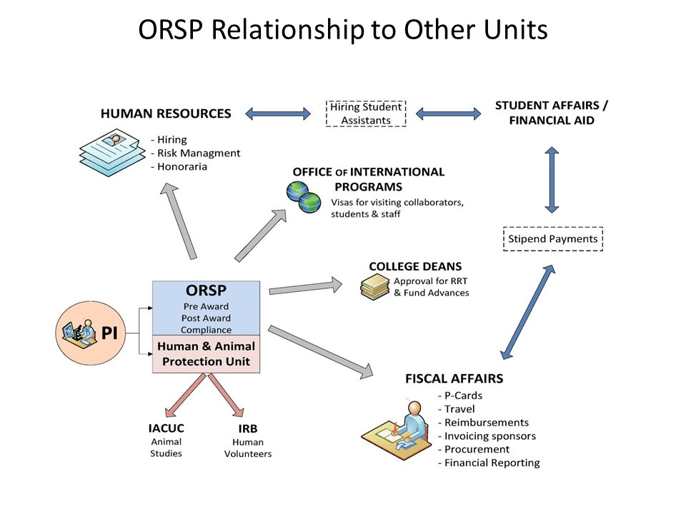 ORSP Relationship to Other Units