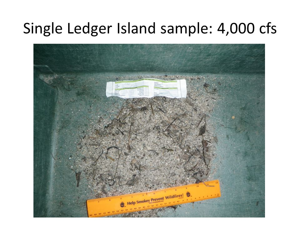 Single Ledger Island sample: 4,000 cfs