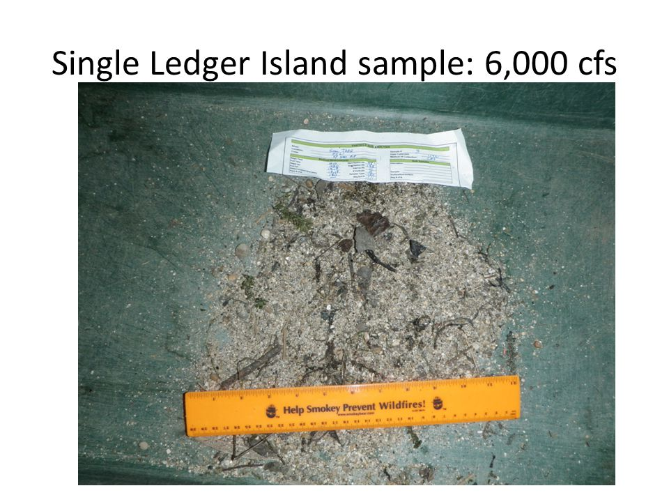 Single Ledger Island sample: 6,000 cfs