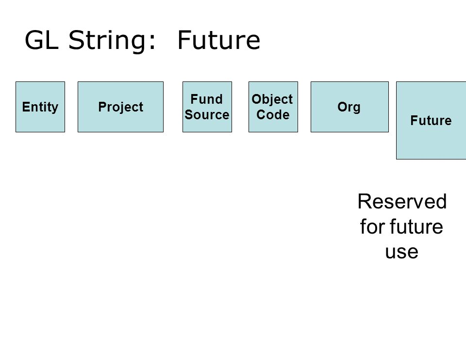 GL String: Future EntityProject Future Org Object Code Fund Source Reserved for future use