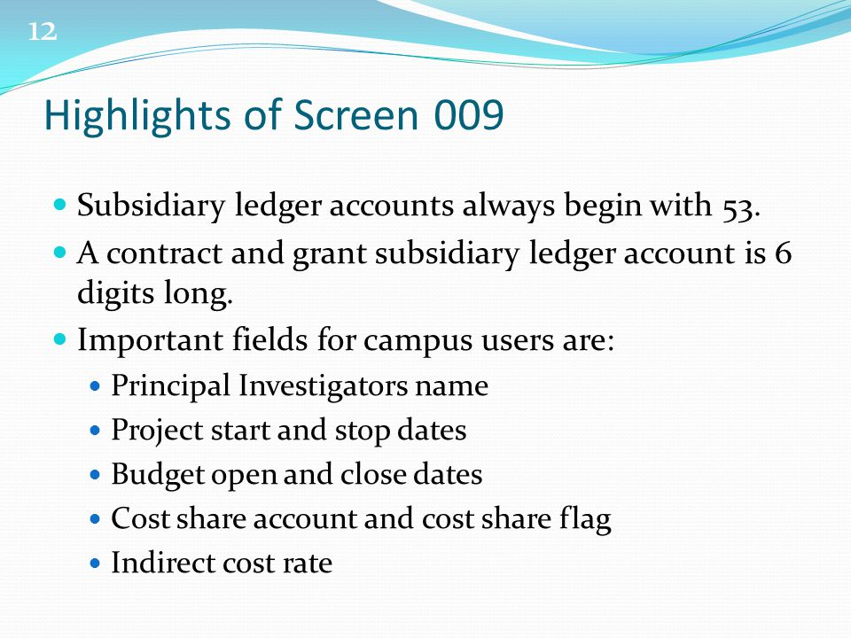 12 Highlights of Screen 009 Subsidiary ledger accounts always begin with 53.