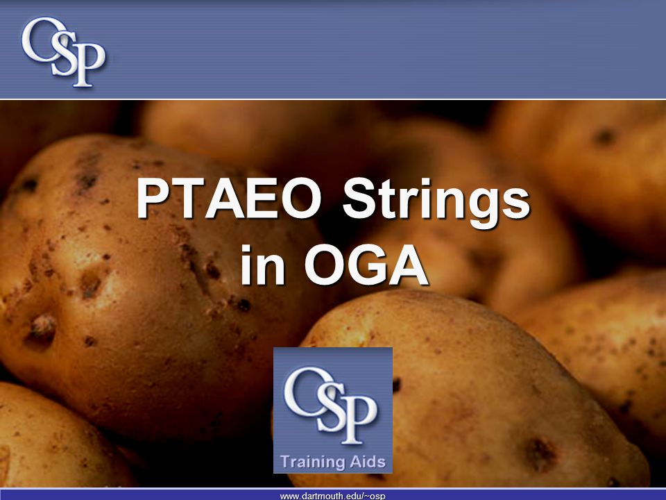 www.dartmouth.edu/~osp PTAEO Strings in OGA