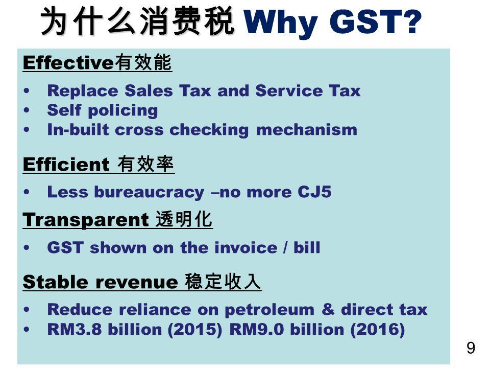 10 什么是消费税? What is GST ? © 2014 Great Vision Business Advisory Services SB All Rights Reserved.