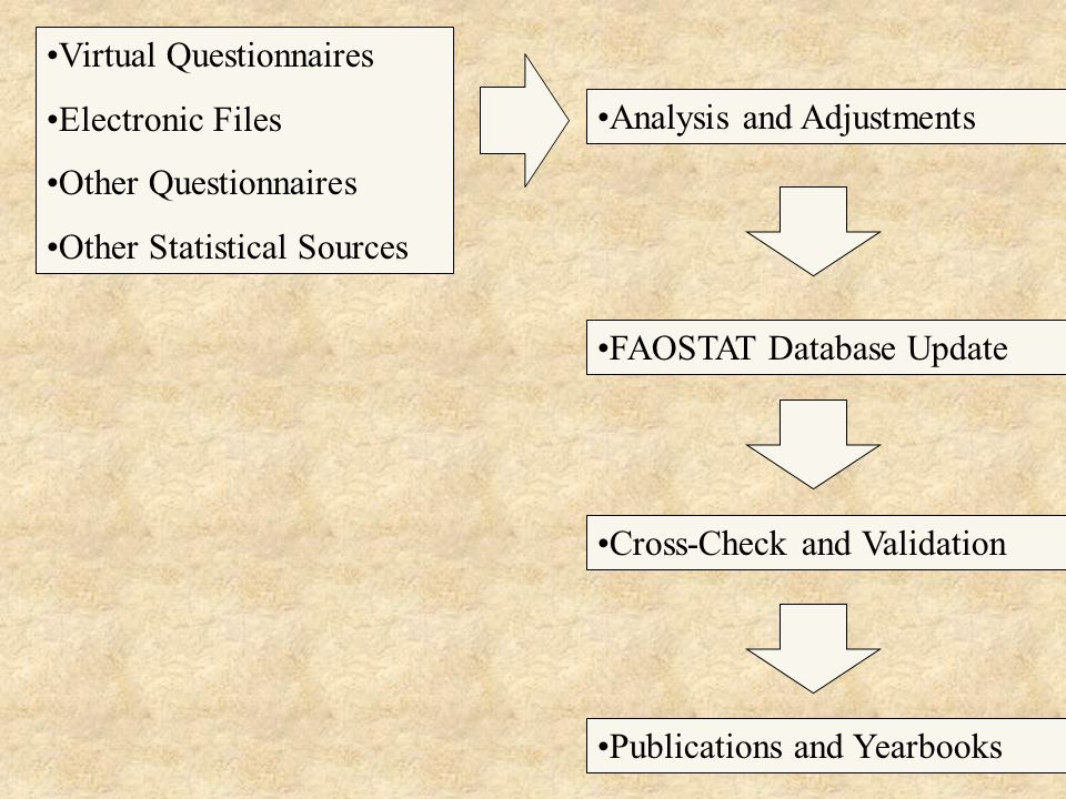 4 Virtual Questionnaires Electronic Files Other Questionnaires Other Statistical Sources Publications and Yearbooks Cross-Check and Validation FAOSTAT Database Update Analysis and Adjustments