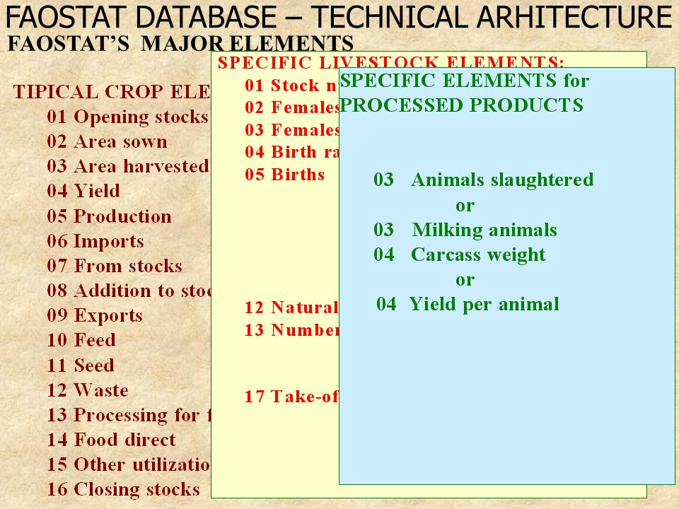 6 FAOSTAT'S MAJOR ELEMENTS FAOSTAT DATABASE – TECHNICAL ARHITECTURE