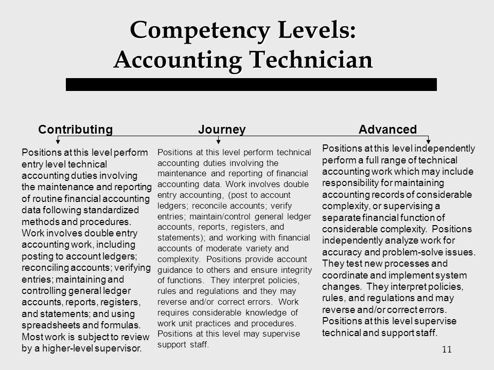 11 Competency Levels: Accounting Technician Positions at this level perform entry level technical accounting duties involving the maintenance and repo