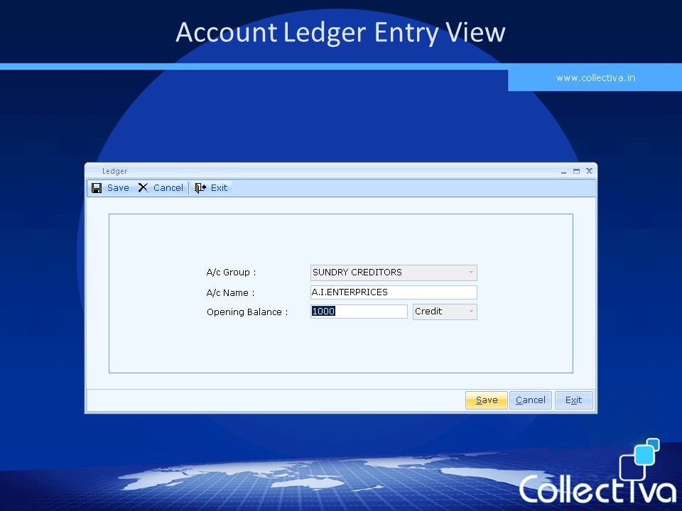 Account Ledger Entry View