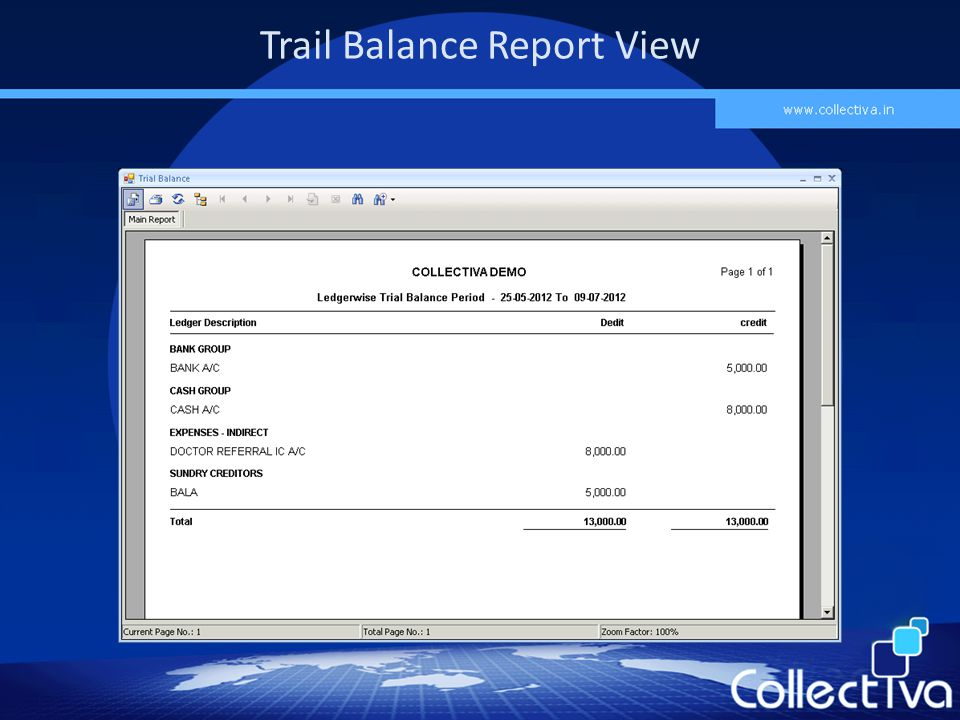 Trail Balance Report View
