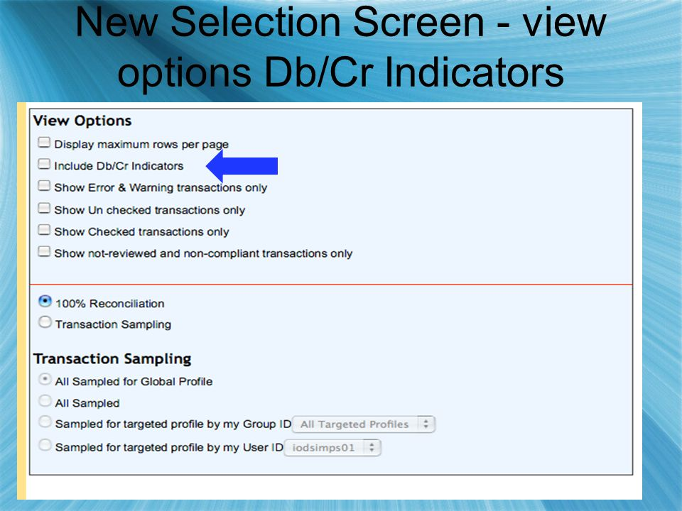 New Selection Screen - view options Db/Cr Indicators