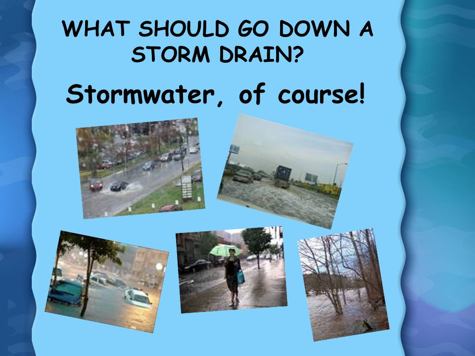 WHAT SHOULD GO DOWN A STORM DRAIN? Stormwater, of course!