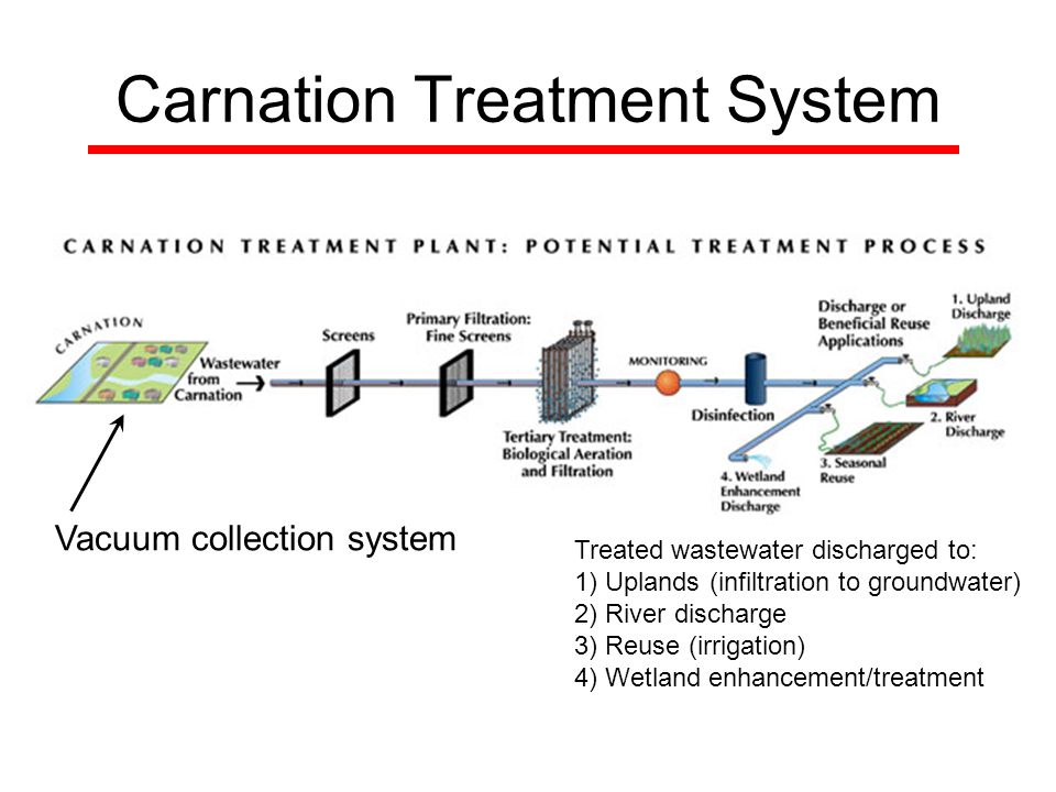 Carnation Treatment System Vacuum collection system Treated wastewater discharged to: 1) Uplands (infiltration to groundwater) 2) River discharge 3) Reuse (irrigation) 4) Wetland enhancement/treatment