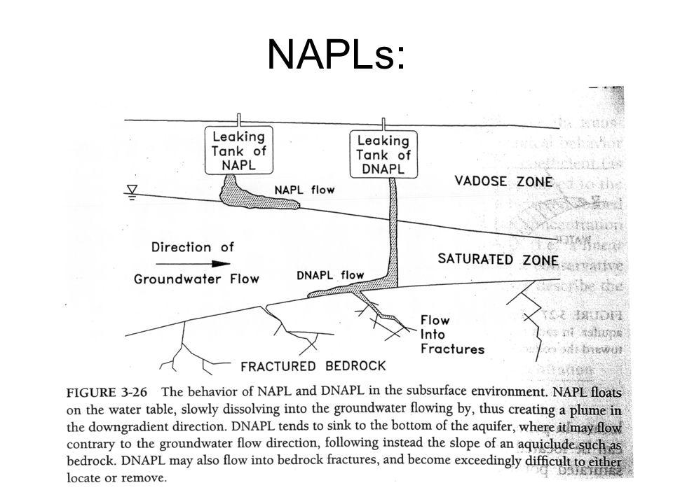 NAPLs: