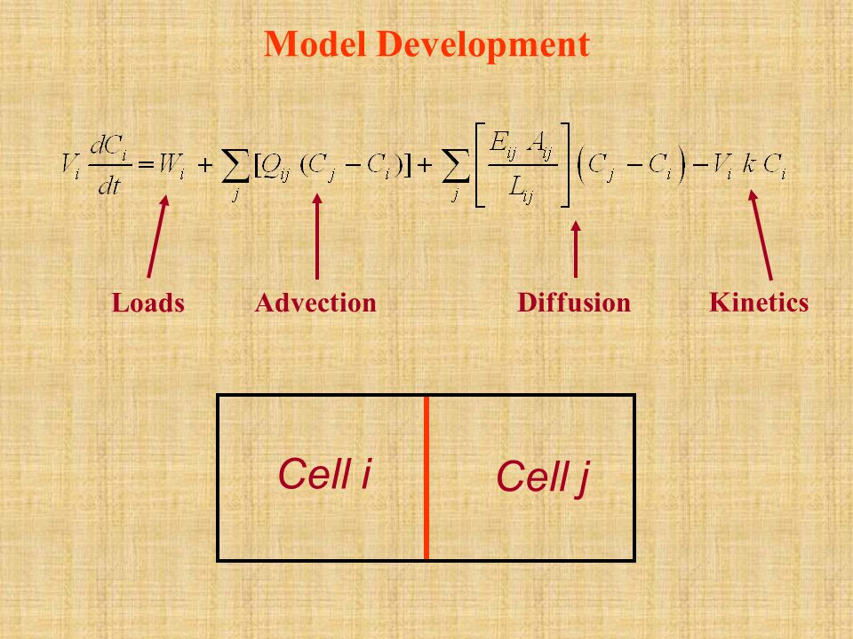 Model Development Loads Advection Diffusion Kinetics Cell i Cell j