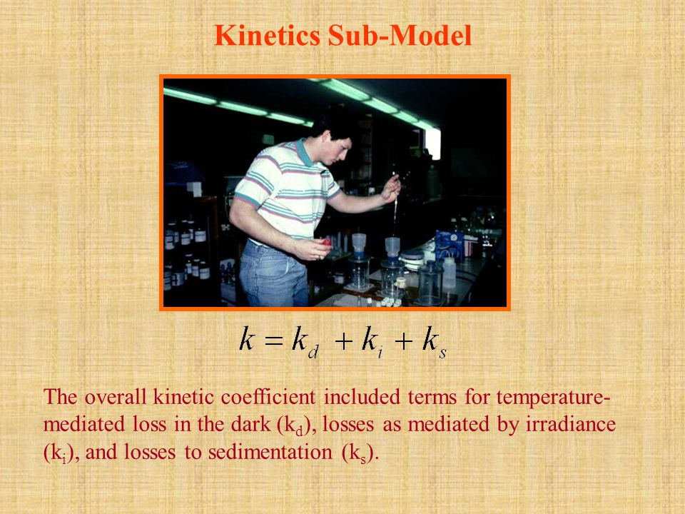 Kinetics Sub-Model The overall kinetic coefficient included terms for temperature- mediated loss in the dark (k d ), losses as mediated by irradiance (k i ), and losses to sedimentation (k s ).