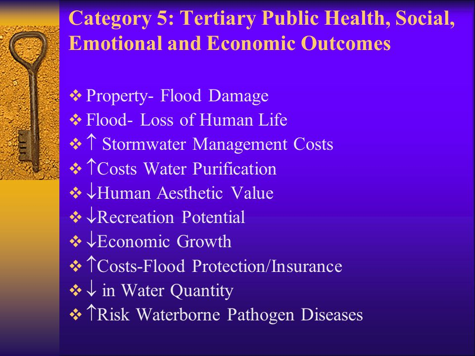  Property- Flood Damage  Flood- Loss of Human Life   Stormwater Management Costs   Costs Water Purification   Human Aesthetic Value   Recreation Potential   Economic Growth   Costs-Flood Protection/Insurance   in Water Quantity   Risk Waterborne Pathogen Diseases