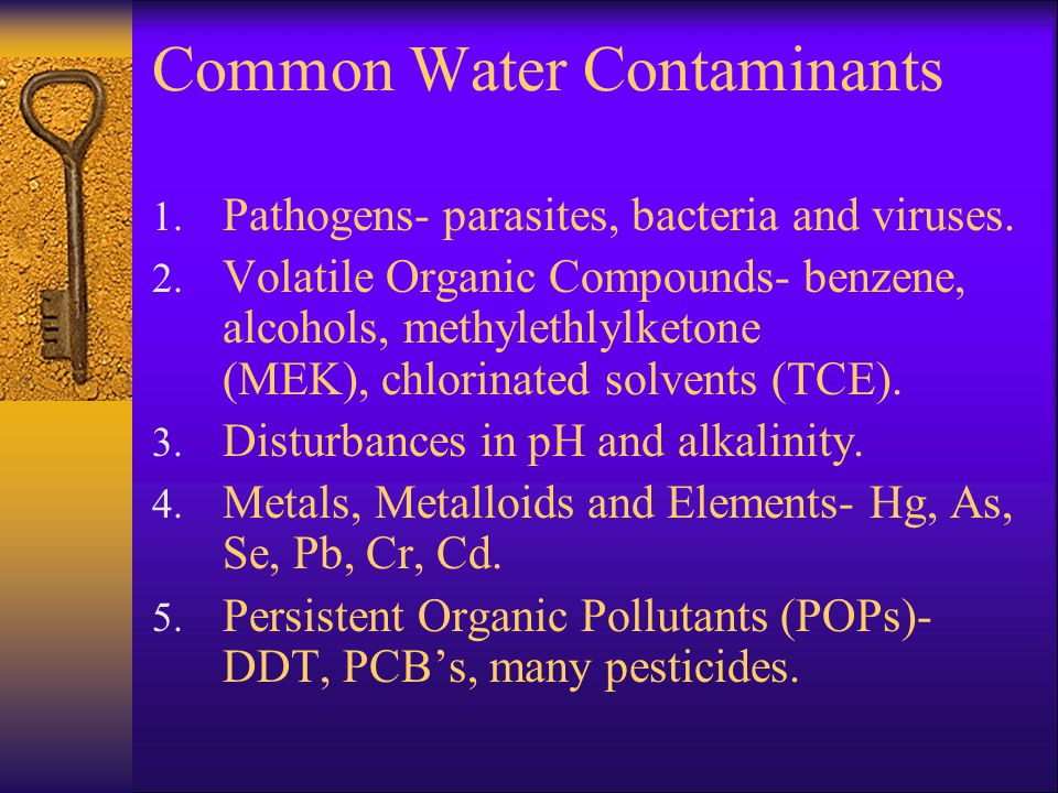 Common Water Contaminants 1. Pathogens- parasites, bacteria and viruses.