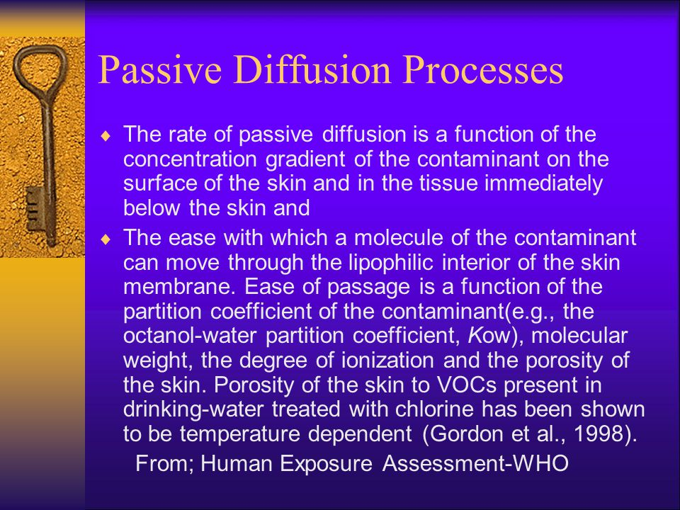 Passive Diffusion Processes  The rate of passive diffusion is a function of the concentration gradient of the contaminant on the surface of the skin and in the tissue immediately below the skin and  The ease with which a molecule of the contaminant can move through the lipophilic interior of the skin membrane.