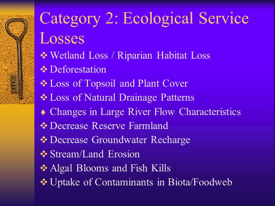 Category 2: Ecological Service Losses  Wetland Loss / Riparian Habitat Loss  Deforestation  Loss of Topsoil and Plant Cover  Loss of Natural Drainage Patterns  Changes in Large River Flow Characteristics  Decrease Reserve Farmland  Decrease Groundwater Recharge  Stream/Land Erosion  Algal Blooms and Fish Kills  Uptake of Contaminants in Biota/Foodweb
