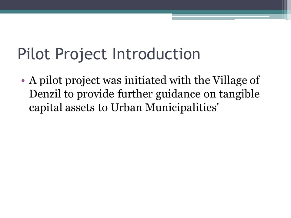 Pilot Project Introduction A pilot project was initiated with the Village of Denzil to provide further guidance on tangible capital assets to Urban Municipalities