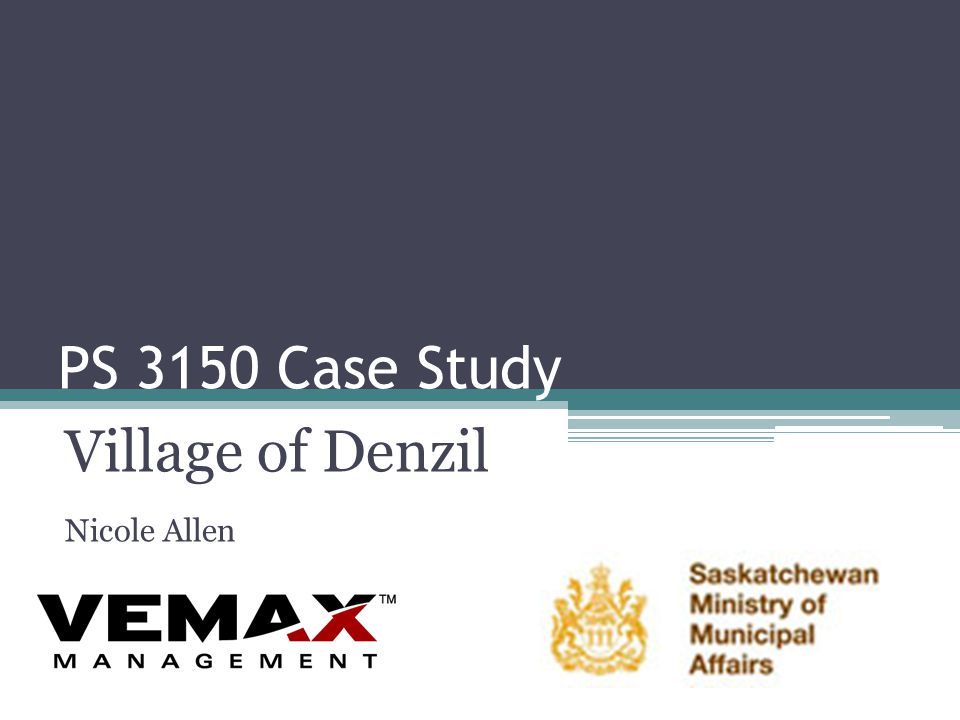 PS 3150 Case Study Village of Denzil Nicole Allen