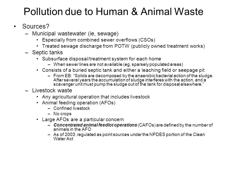 Pollution due to Human & Animal Waste Sources? –Municipal wastewater (ie, sewage) Especially from combined sewer overflows (CSOs) Treated sewage disch
