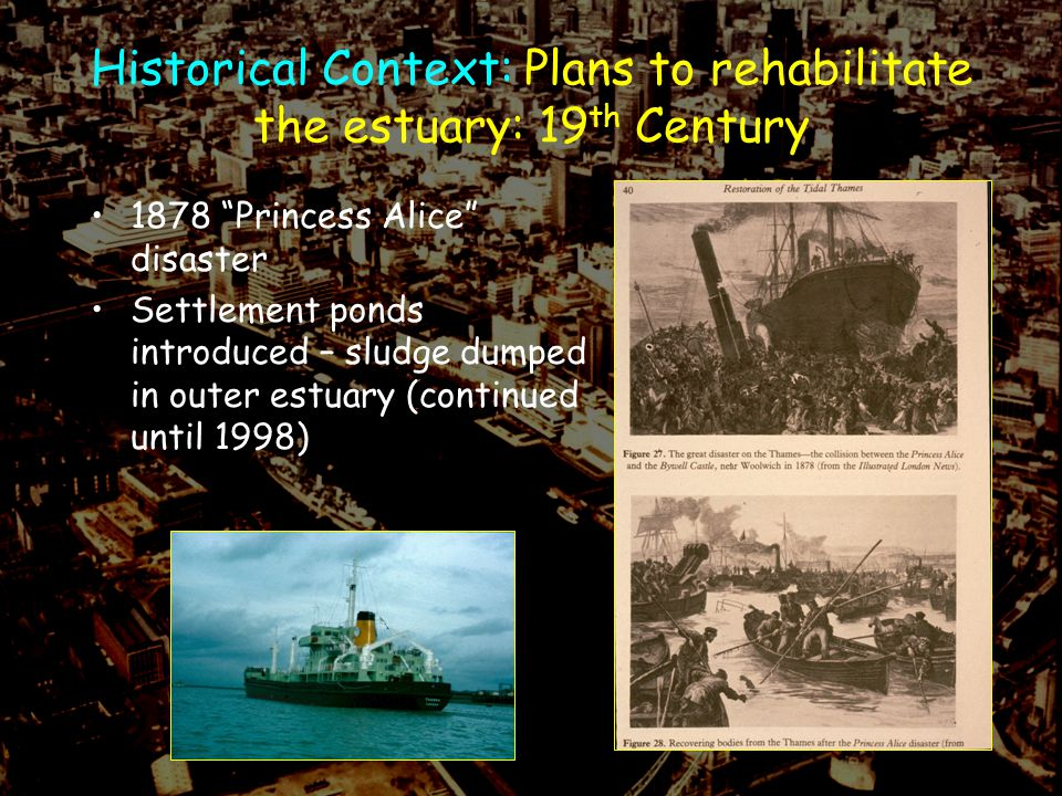 Historical Context: Plans to rehabilitate the estuary: 19 th Century 1878 Princess Alice disaster Settlement ponds introduced – sludge dumped in outer estuary (continued until 1998)