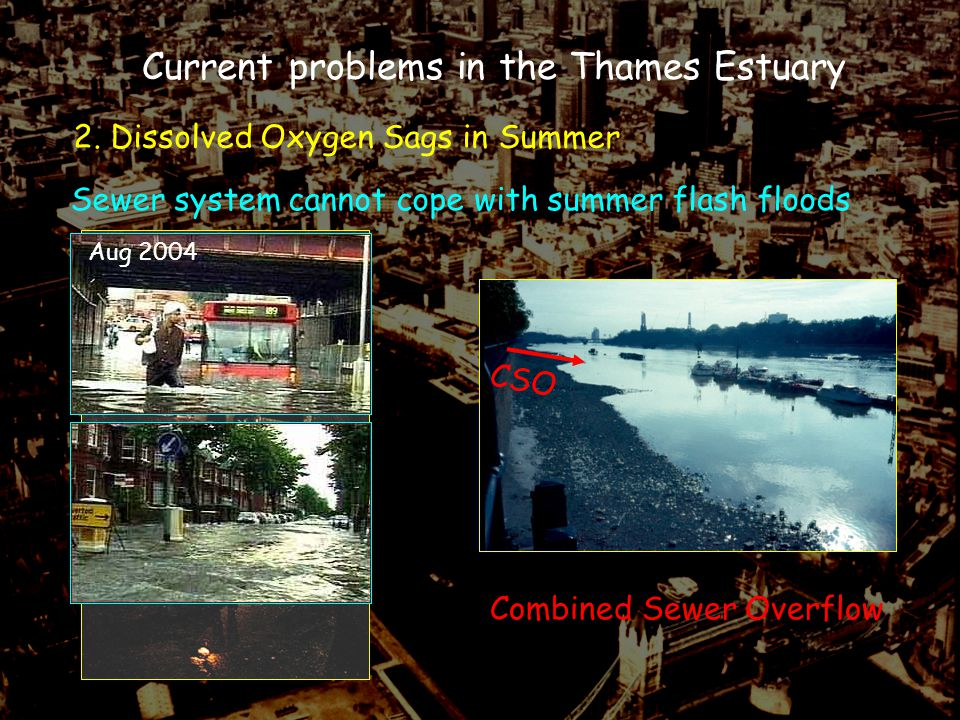 2. Dissolved Oxygen Sags in Summer Current problems in the Thames Estuary Sewer system cannot cope with summer flash floods Aug 2004 CSO Combined Sewe