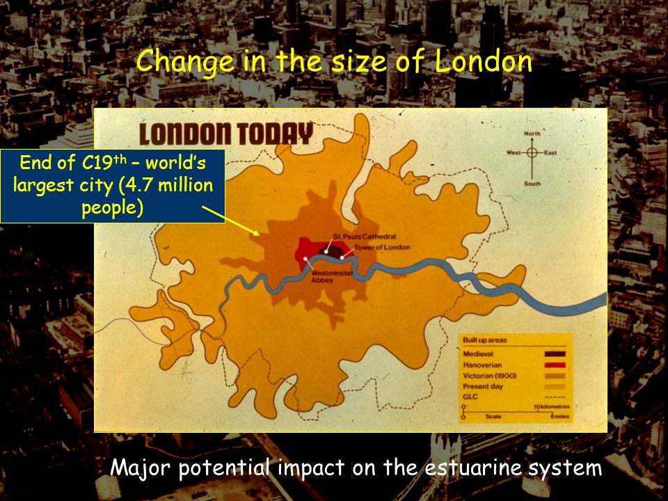 Historical Context: It all goes wrong again: 20th Century 1950s – worse the Thames had ever been 52 km dissolved O 2 <5% 20 km no measurable oxygen No fish populations for 69 km of estuary (Kew- Gravesend) Tubifex