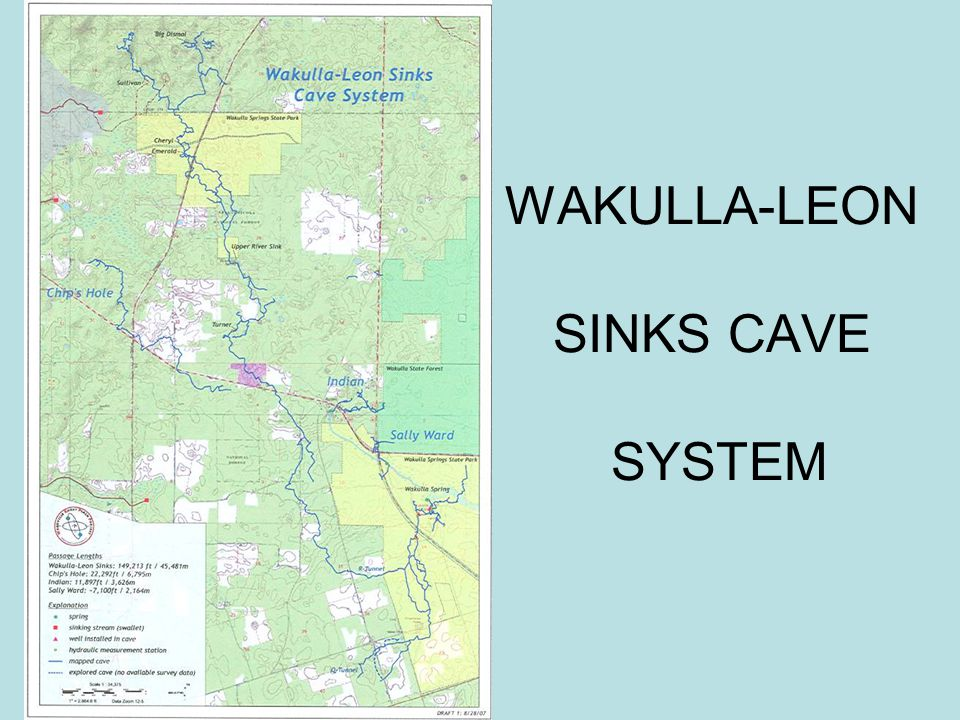 WAKULLA-LEON SINKS CAVE SYSTEM