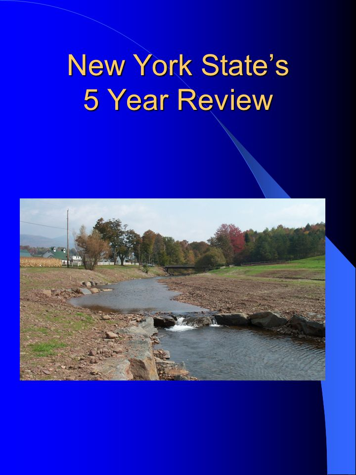 New York State's 5 Year Review