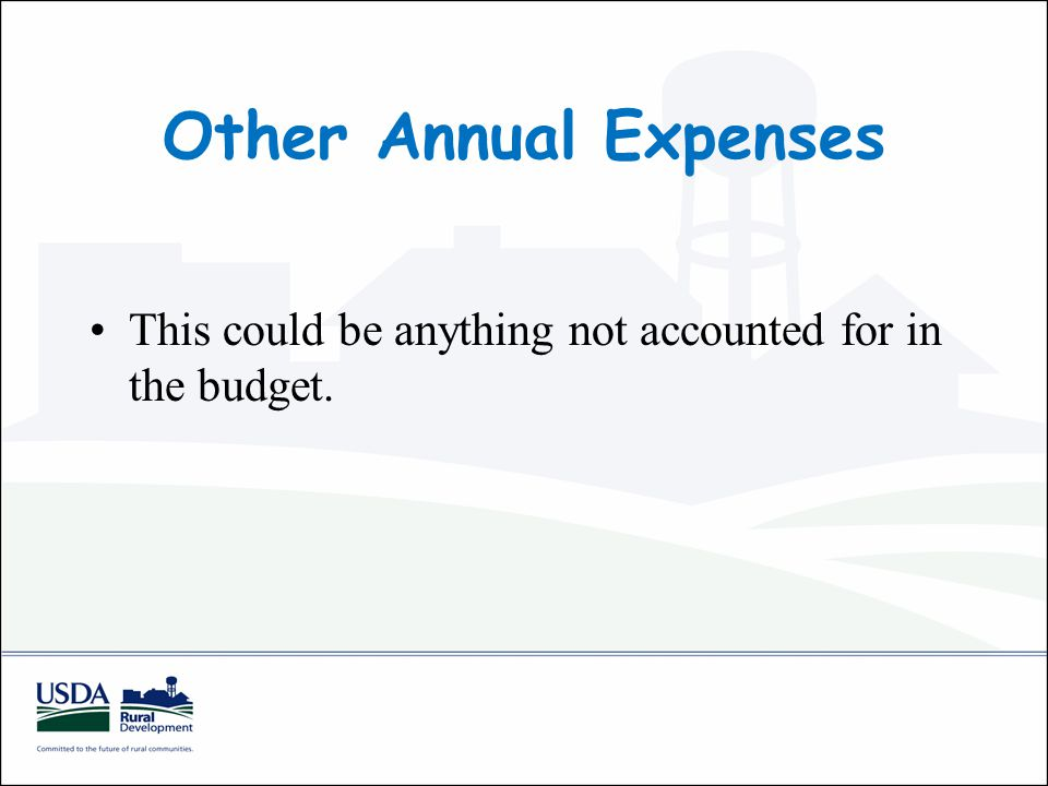 Other Annual Expenses This could be anything not accounted for in the budget.