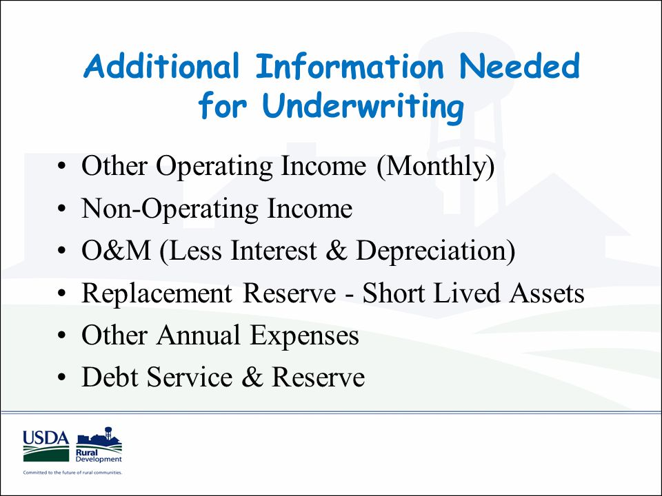 Other Operating Income (Monthly) Non-Operating Income O&M (Less Interest & Depreciation) Replacement Reserve - Short Lived Assets Other Annual Expenses Debt Service & Reserve Additional Information Needed for Underwriting