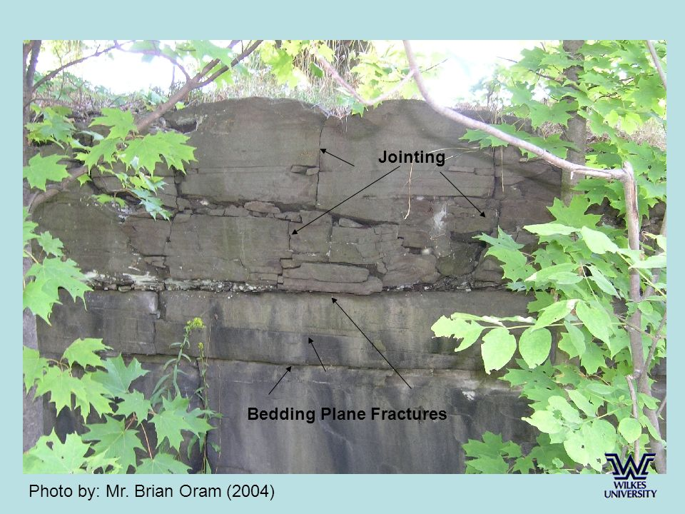 Bedding Plane Fractures Jointing Photo by: Mr. Brian Oram (2004)