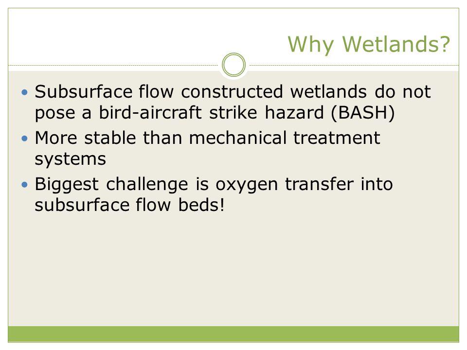 Why Wetlands.