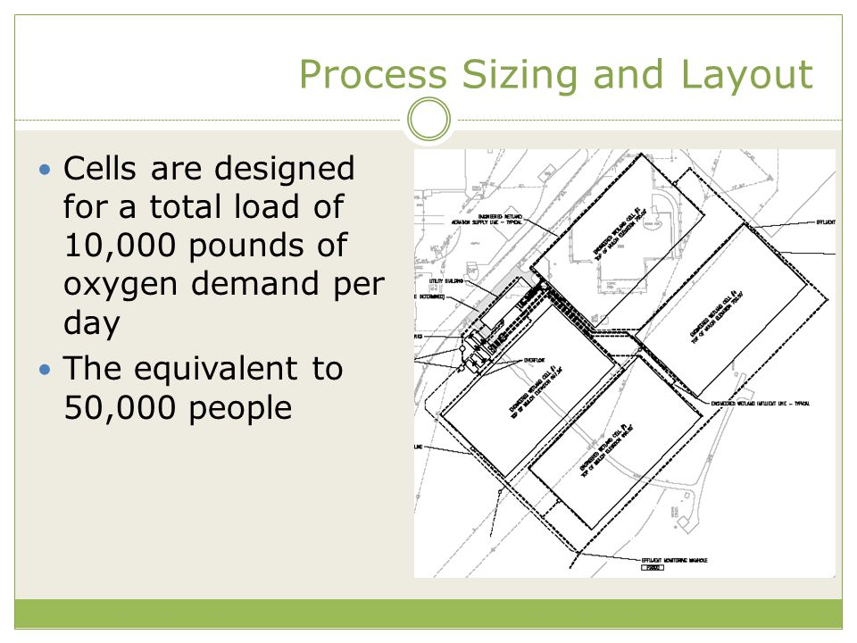 Process Sizing and Layout Cells are designed for a total load of 10,000 pounds of oxygen demand per day The equivalent to 50,000 people
