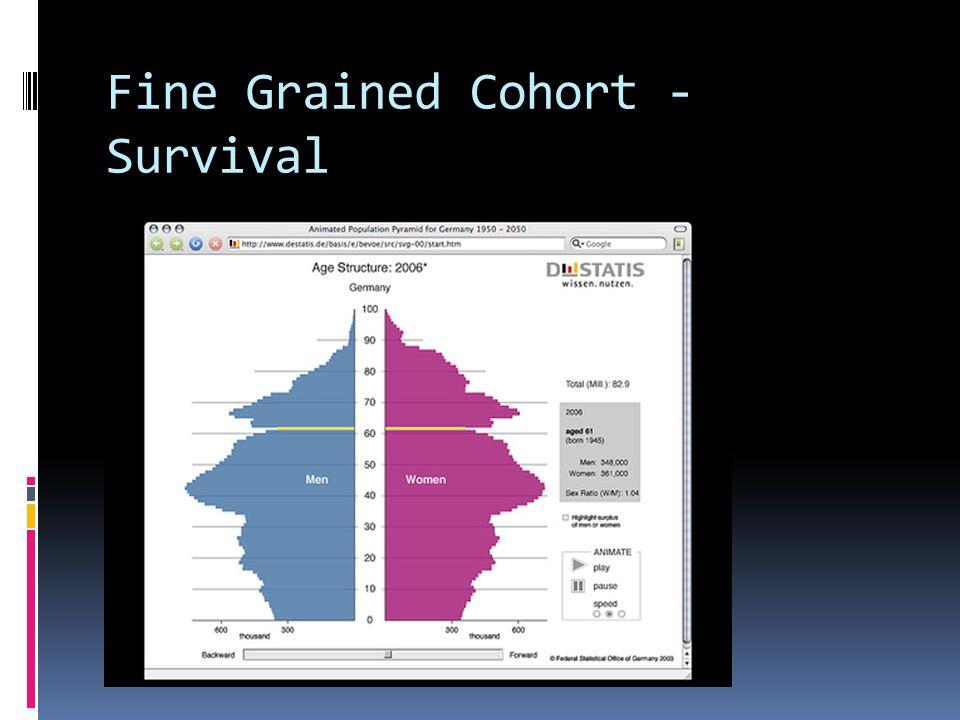 Fine Grained Cohort - Survival