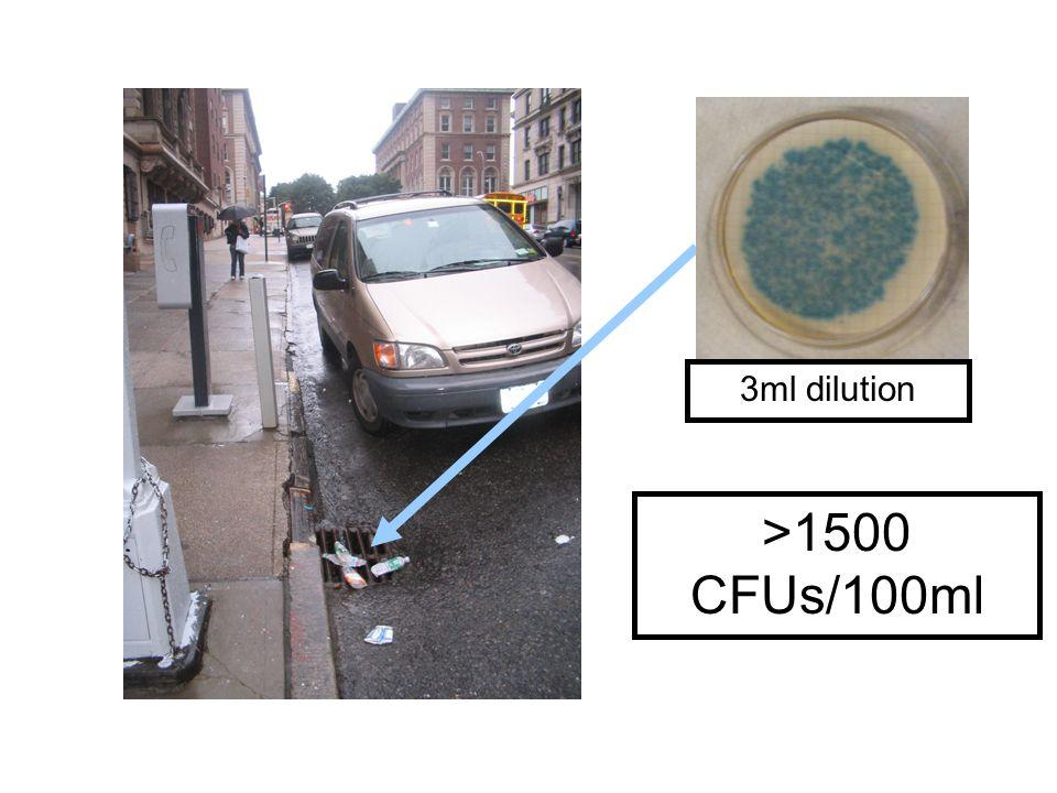 >1500 CFUs/100ml 3ml dilution