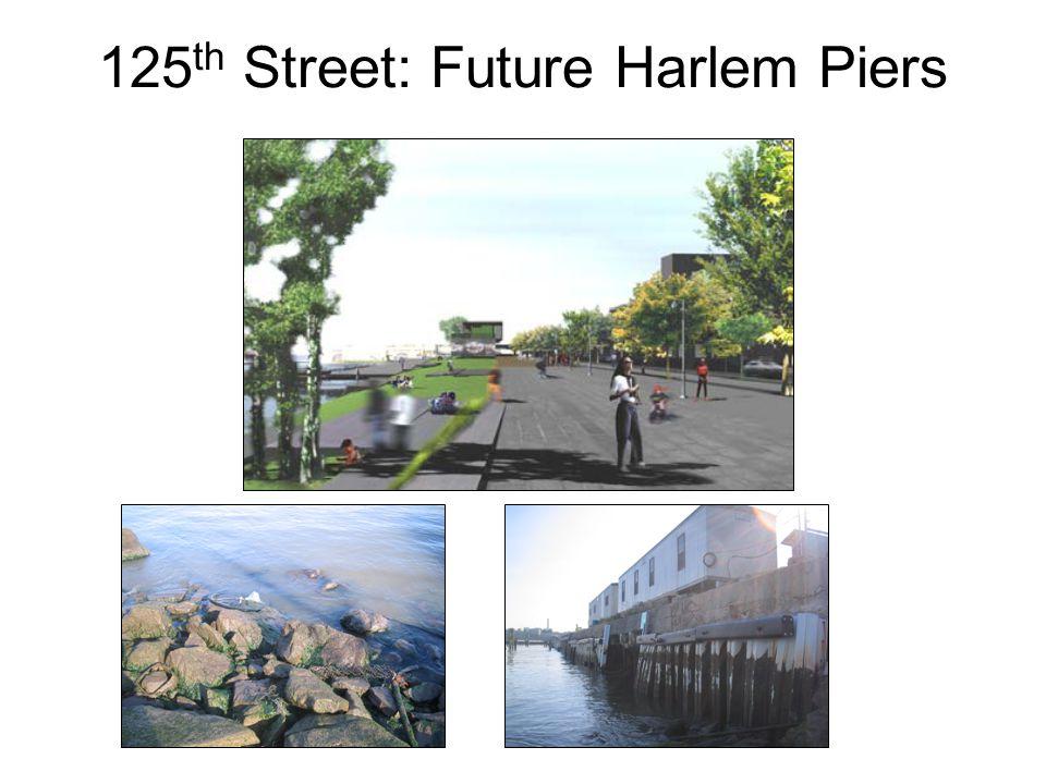 125 th Street: Future Harlem Piers