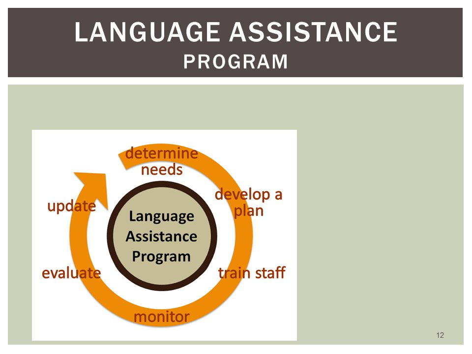 12 LANGUAGE ASSISTANCE PROGRAM