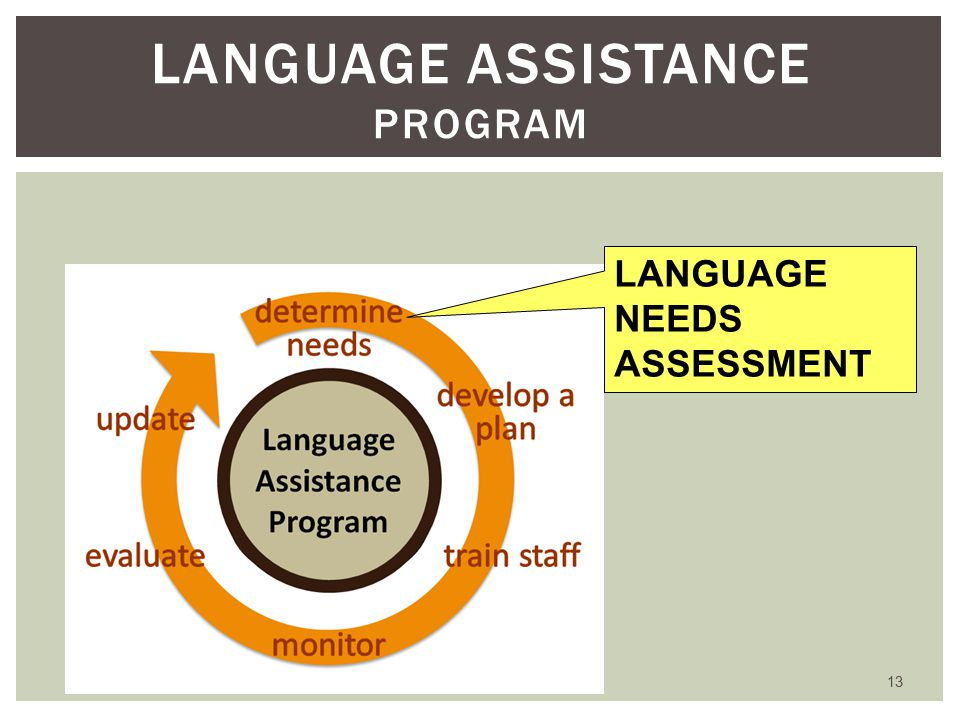 13 LANGUAGE ASSISTANCE PROGRAM LANGUAGE NEEDS ASSESSMENT