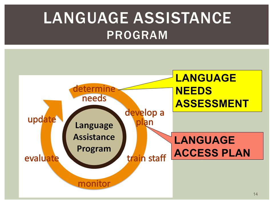 14 LANGUAGE ASSISTANCE PROGRAM LANGUAGE NEEDS ASSESSMENT LANGUAGE ACCESS PLAN