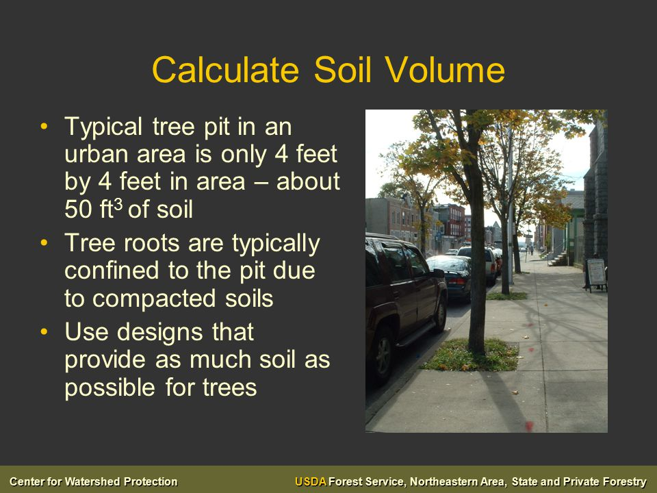 Center for Watershed Protection USDA Forest Service, Northeastern Area, State and Private Forestry Calculate Soil Volume Typical tree pit in an urban area is only 4 feet by 4 feet in area – about 50 ft 3 of soil Tree roots are typically confined to the pit due to compacted soils Use designs that provide as much soil as possible for trees