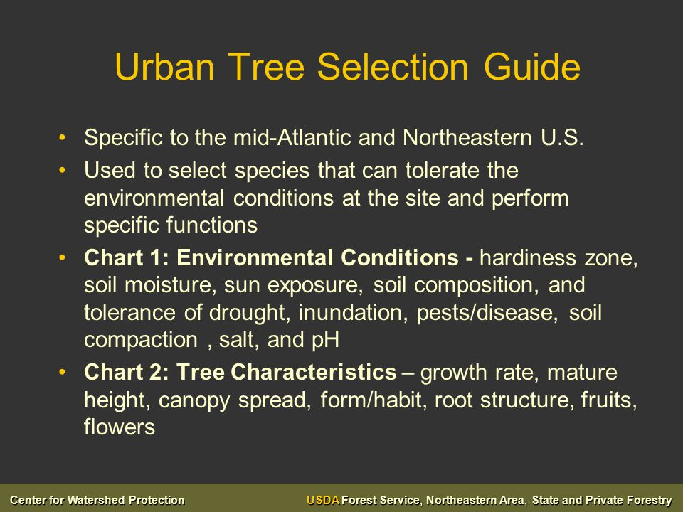 Center for Watershed Protection USDA Forest Service, Northeastern Area, State and Private Forestry Urban Tree Selection Guide Specific to the mid-Atlantic and Northeastern U.S.