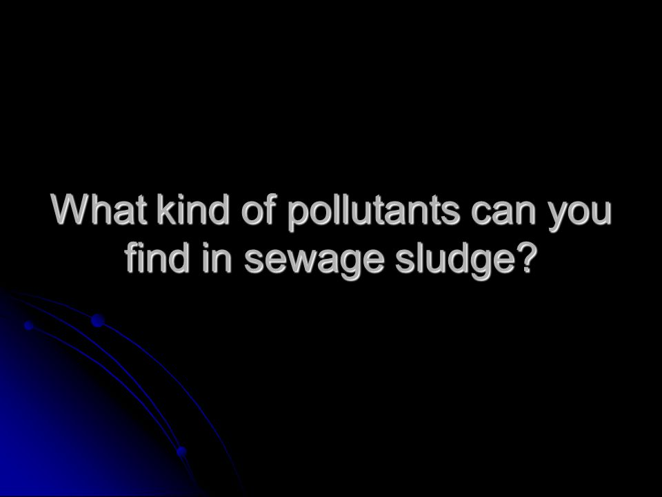 What kind of pollutants can you find in sewage sludge?