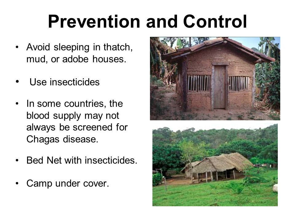 Prevention and Control Avoid sleeping in thatch, mud, or adobe houses.