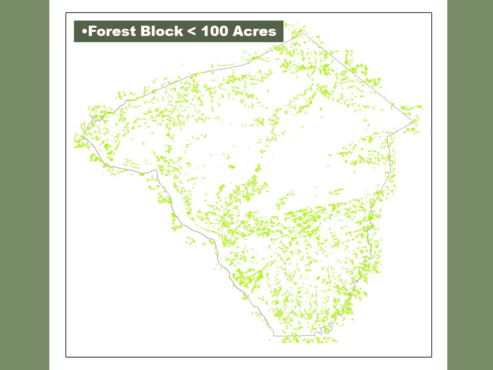 Forest Block < 100 Acres