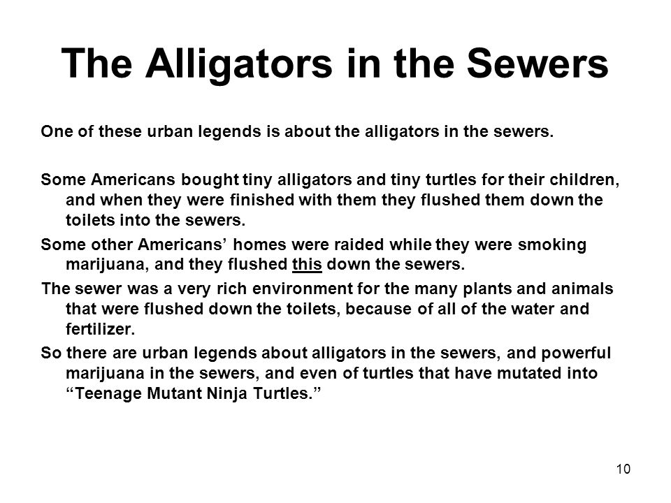 10 The Alligators in the Sewers One of these urban legends is about the alligators in the sewers.