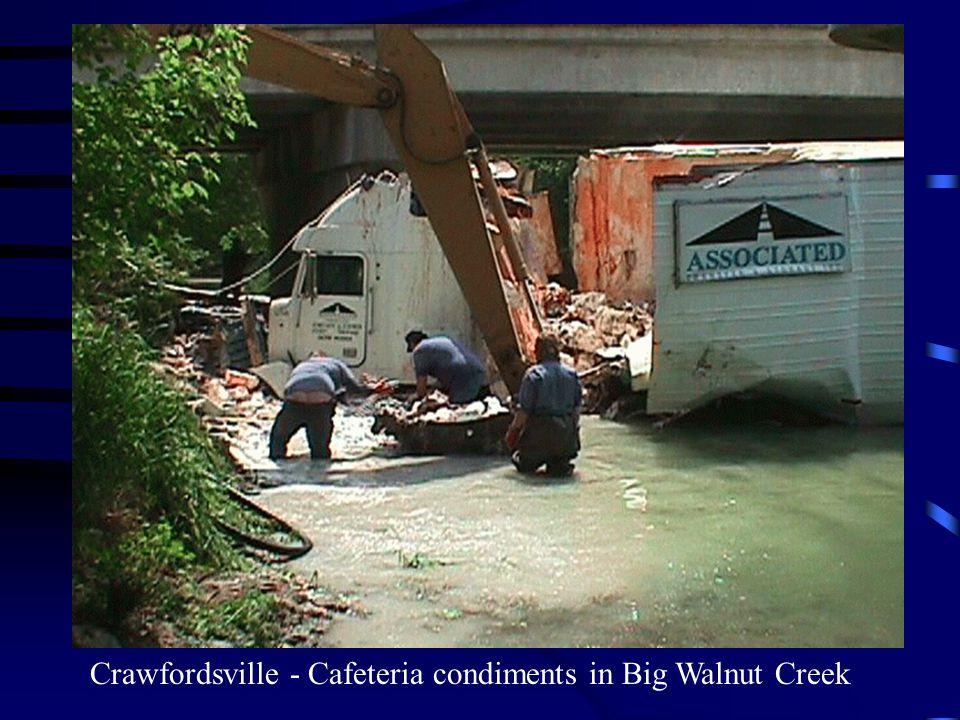 Crawfordsville - Cafeteria condiments in Big Walnut Creek