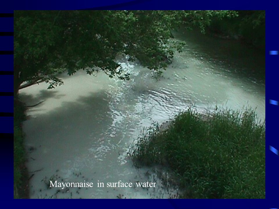 Mayonnaise in surface water
